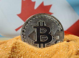 Fibonacci könnte verwendet werden, um die Regelmäßigkeit in der Bewegung von Bitcoin-Werten zu erkennen